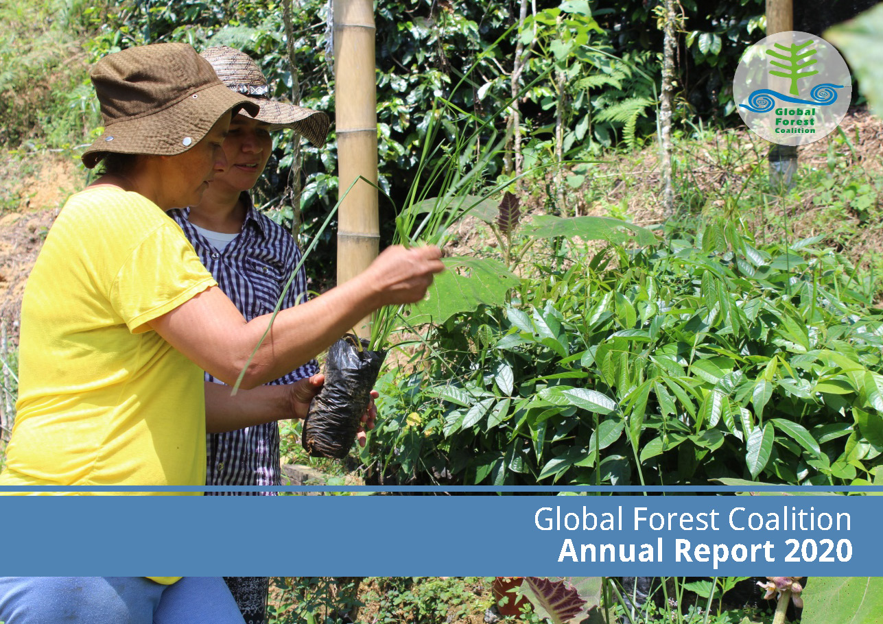 Global Forest Coalition 2020 Annual Report (全球森林联盟2020年年报)